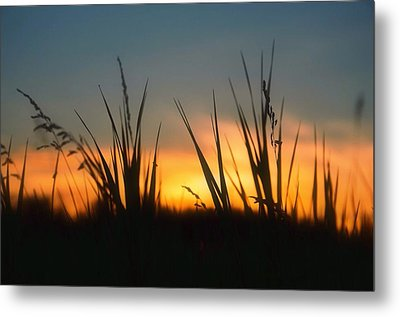 Surreal Sunset Metal Print
