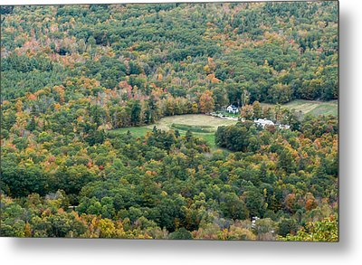 Surrounded By Autumn Metal Print by Karen Stephenson