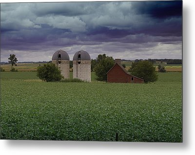 Surrounded By Fields Metal Print by Rebecca Davis