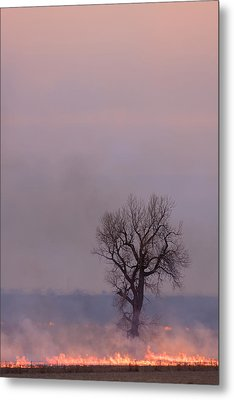Surrounded By Fire Metal Print by Scott Bean