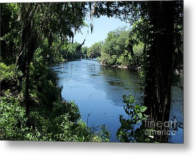 Suwanee River View Metal Print by Theresa Willingham