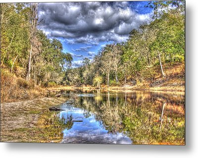 Suwannee River Scene Metal Print by Donald Williams