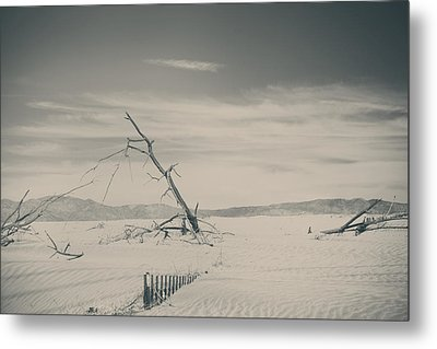 Swallowed Up Metal Print by Laurie Search