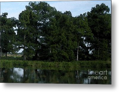 Swamp Cypress Trees Digital Oil Painting Metal Print by Joseph Baril