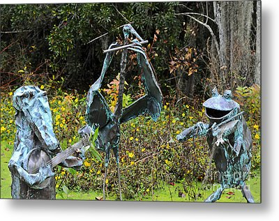 Swampland Critter Band 1 Metal Print by Al Powell Photography USA