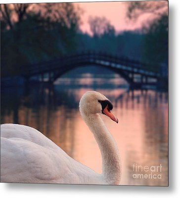 Swan Bridge Metal Print