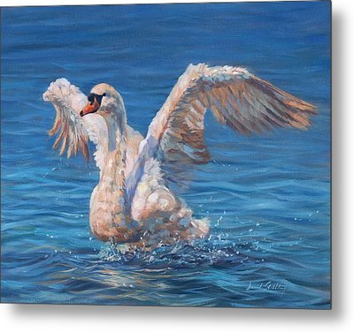 Swan Metal Print by David Stribbling