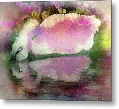 Swan Lake Reflection Metal Print by Jill Balsam