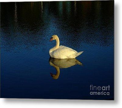 Swan Reflection Metal Print by Bob Sample
