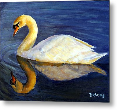 Swan Swimming At Sunset Metal Print by Dottie Dracos
