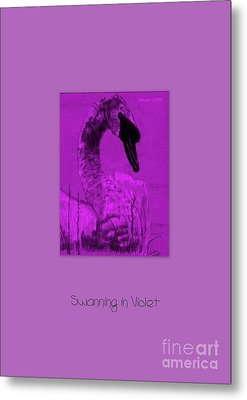 Metal Print featuring the photograph Swanning In Violet by Linda Prewer