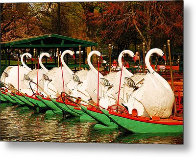 Metal Print featuring the photograph Swans In Boston Common by James Kirkikis