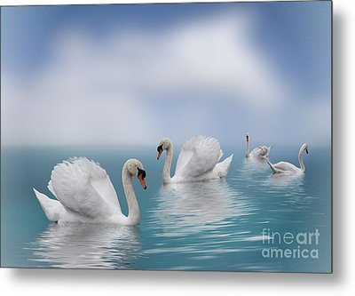 Swans In Paradise Metal Print by Shirley Mangini