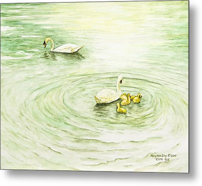 Swans In St. Pierre Metal Print