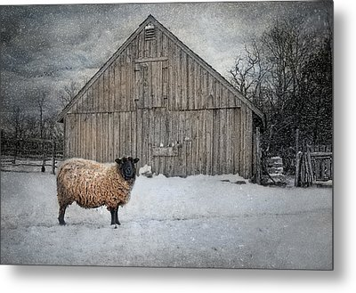 Sweater Weather Metal Print by Robin-lee Vieira