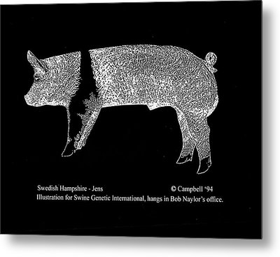 Metal Print featuring the drawing Swedish Hampshire by Larry Campbell