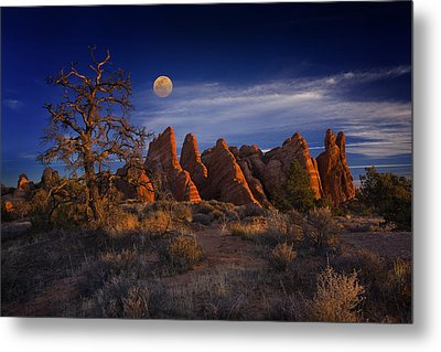 Sweet Light Metal Print by Wendell Thompson