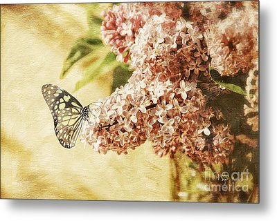 Sweet Lilacs Metal Print by Lois Bryan