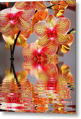 Sweet Orchid Reflection Metal Print
