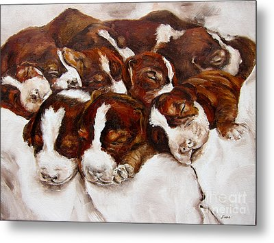 Sweet Sleep Metal Print by Diane Kraudelt