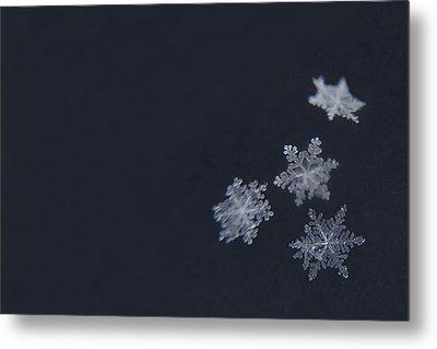 Sweet Snowflakes Metal Print by Carrie Ann Grippo-Pike