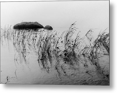Metal Print featuring the photograph Sweet Water by Edgar Laureano