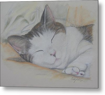 Sweet While Sleeping Metal Print