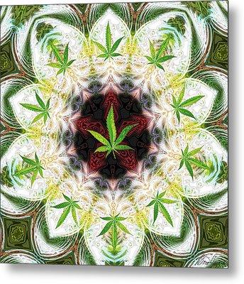 Sweetleaf Mandala Metal Print by Diana Haronis