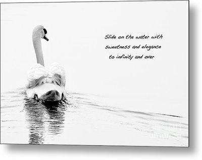 Sweetness And Elegance Metal Print