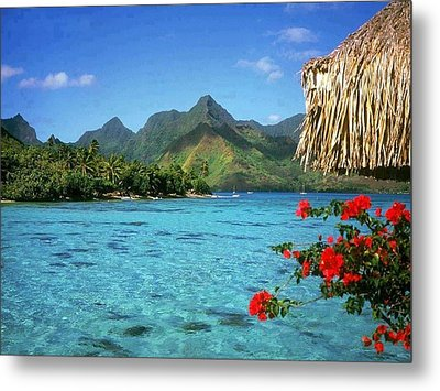Swim In The Sea Metal Print