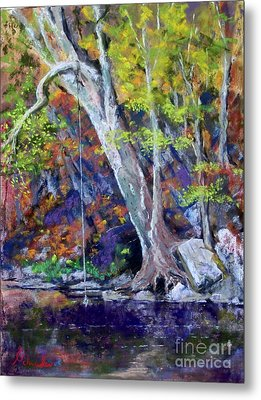 Swimming Hole Metal Print by Bruce Schrader