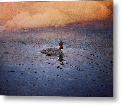 Swimming In A Frozen Lake Metal Print