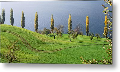 Switzerland, Lake Zug, View Of A Row Metal Print by Panoramic Images