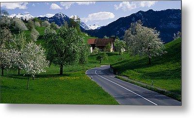 Switzerland, Luzern, Trees, Road Metal Print by Panoramic Images