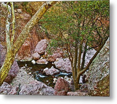 Sycamore And Cottonwood In Whitewater Catwalk National Recreation Trail Near Glenwood-new Mexico  Metal Print by Ruth Hager