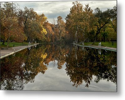 Sycamore Pool Reflection Metal Print