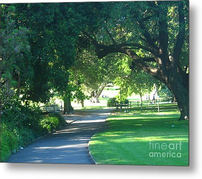 Metal Print featuring the photograph Sydney Botanical Gardens Walk by Leanne Seymour