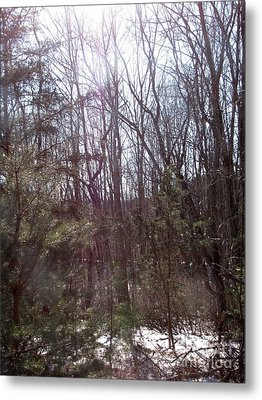 Metal Print featuring the photograph Sylphs by Melissa Stoudt