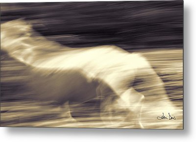 Metal Print featuring the photograph Synchronicity by Joan Davis
