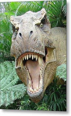 T-rex Metal Print by David Nicholls