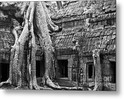 Ta Prohm Roots And Stone 01 Metal Print