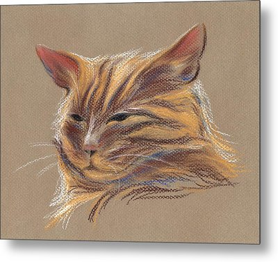Metal Print featuring the pastel Tabby Cat Portrait In Pastels by MM Anderson