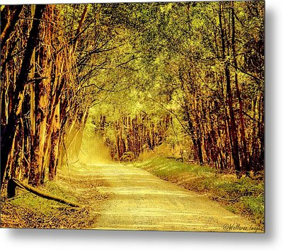 Metal Print featuring the photograph Take Me Home by Wallaroo Images