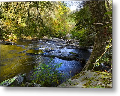 Take Me To The River Metal Print by Debra and Dave Vanderlaan
