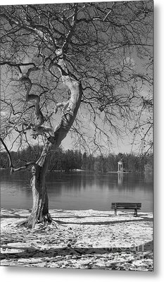Metal Print featuring the photograph Take Your Time  by Juergen Klust