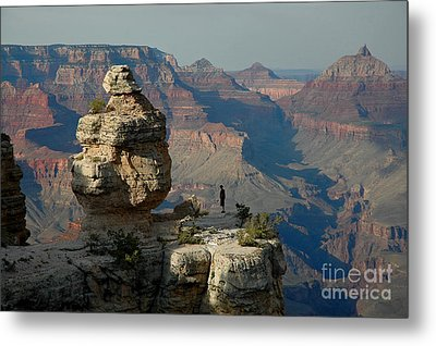 Metal Print featuring the photograph Taking It All In by Nick  Boren