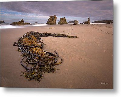 Tangled.... Bandon Oregon Metal Print