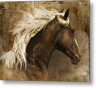 Metal Print featuring the photograph Taos by Priscilla Burgers