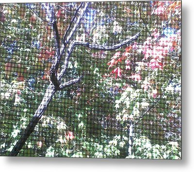 Metal Print featuring the photograph Tapestry Of Leaves 1 by Gayle Price Thomas