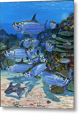 Tarpon Alley In0019 Metal Print by Carey Chen